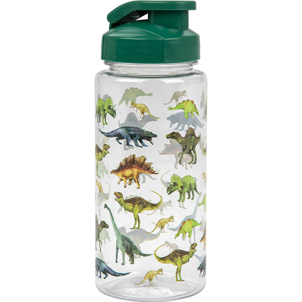 bouteille rechargeable dinosaure